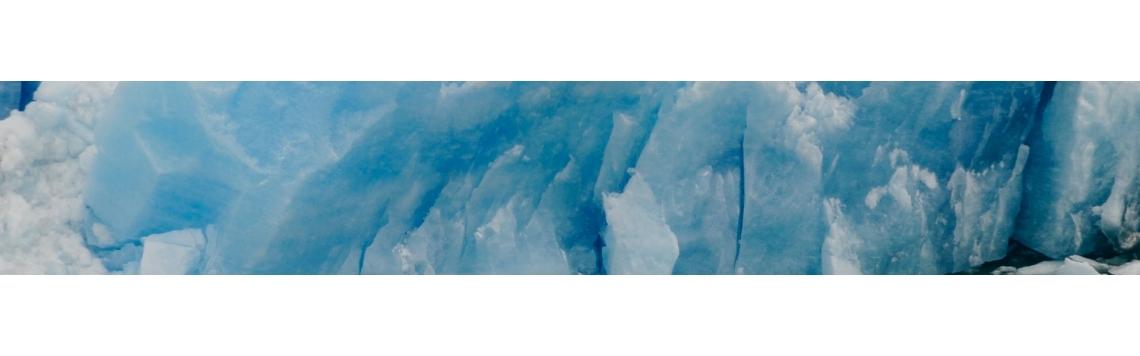 Colección Antártida